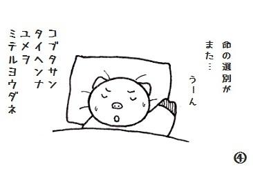 コブタさんの武火祭 り 4-4.jpg